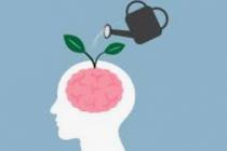 4 ways to nourish the brain, increase memory